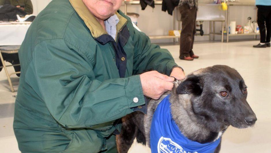 Big Lakes opens animal care facility