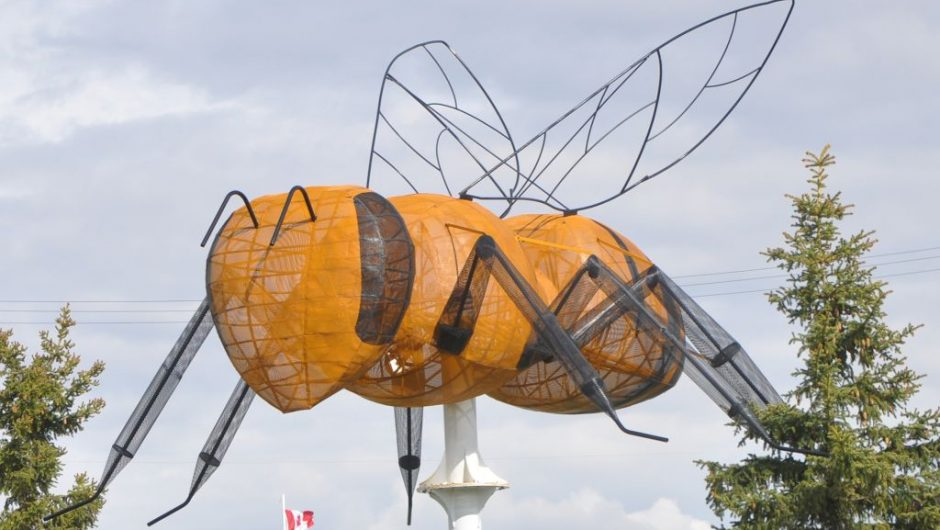 Bee bylaw closer to reality